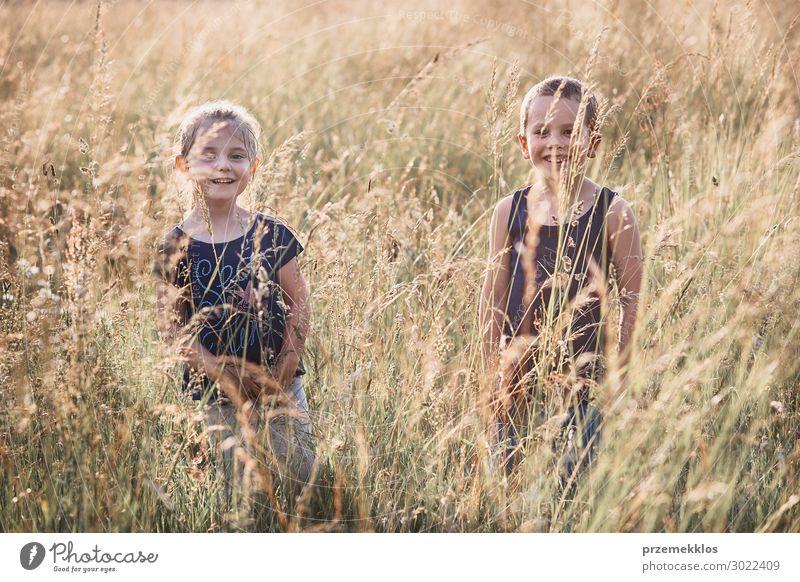 Kleine glückliche lächelnde Kinder, die in einem hohen Gras spielen. Lifestyle Freude Glück Erholung Ferien & Urlaub & Reisen Sommer Sommerurlaub Mensch Mädchen