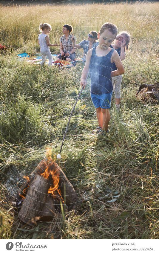 Kleiner Junge, der Marshmallow über einem Lagerfeuer brät. Lifestyle Freude Glück Erholung Ferien & Urlaub & Reisen Sommer Sommerurlaub Kind Mensch Mädchen Frau