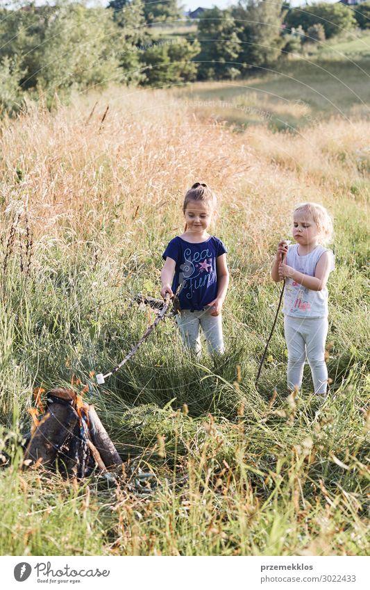 Kleine Mädchen, die Marshmallows über einem Lagerfeuer braten. Lifestyle Freude Glück Erholung Ferien & Urlaub & Reisen Sommer Sommerurlaub Kind Mensch Frau