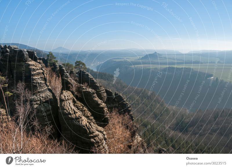 Sächsische Schweiz Landschaft Berge u. Gebirge Felsen Natur Mittelgebirge Gesteinsformationen Wald Baum Aussicht Panorama (Aussicht) Elbsandsteingebirge Sachsen