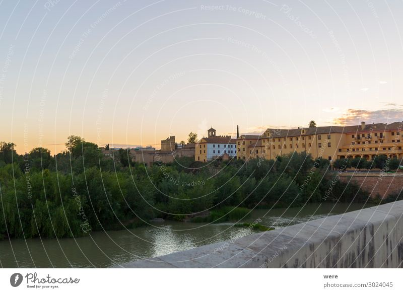 Evening view over the Roman bridge to the old town of Cordoba Stadtzentrum Skyline Palast Fassade Stimmung Idylle Stolz Andalusia Historic facades Holiday Spain