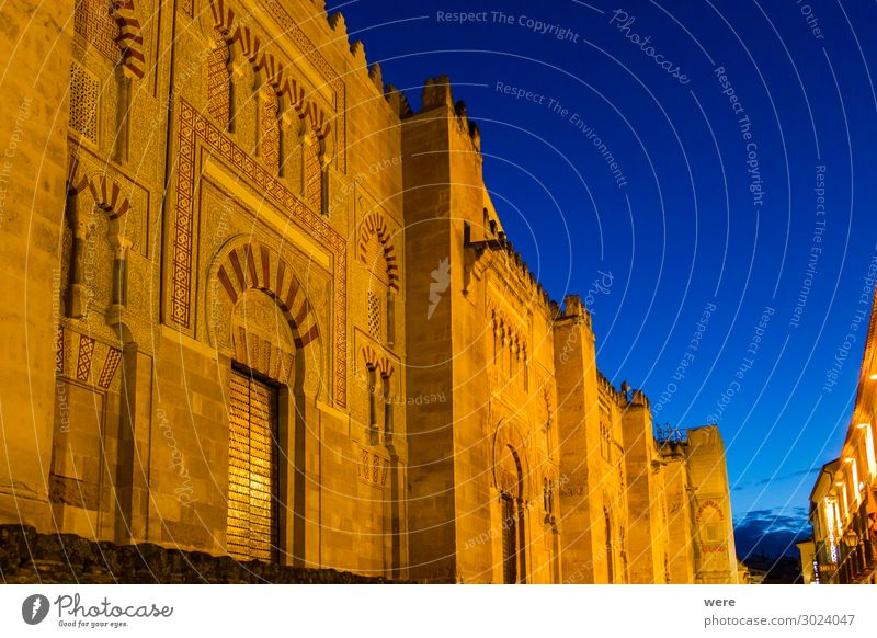 Illuminated facade of the Mezquita in Cordoba at the Blue Hour Spanien Europa Palast Gebäude Fassade alt authentisch gold Andalusia Historic facades Holiday