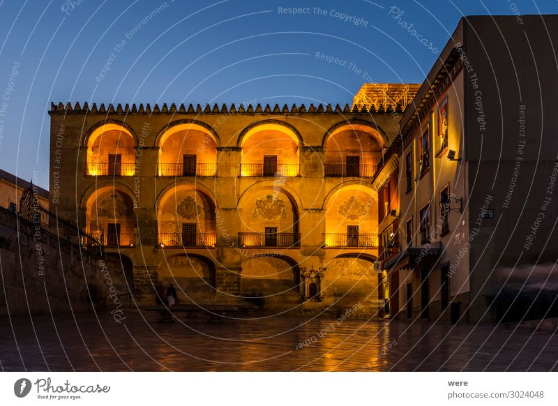 Illuminated facade of the Mezquita in Cordoba Bauwerk Gebäude Fassade Sehenswürdigkeit alt Andalusia Historic facades Holiday Roman bridge Spain blue hour