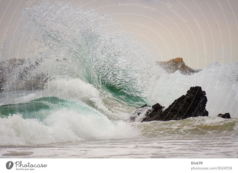 Freak Wave Umwelt Natur Landschaft Urelemente Wasser Wetter Unwetter Wind Sturm Felsen Wellen Küste Strand Meer Biscaya Atlantik Felsküste Brandung Gischt
