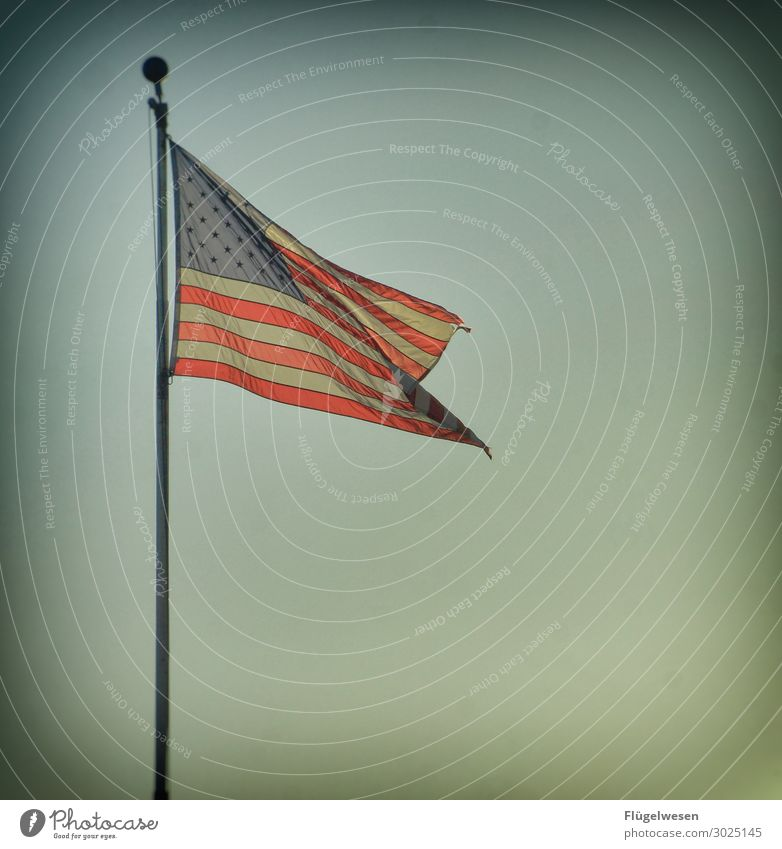 3) God bless America (aber bitte schnell) Amerika Amerikaner USA Stars and Stripes Fahne Nationalitäten u. Ethnien Patriotismus Lokalpatriotismus Erfolg