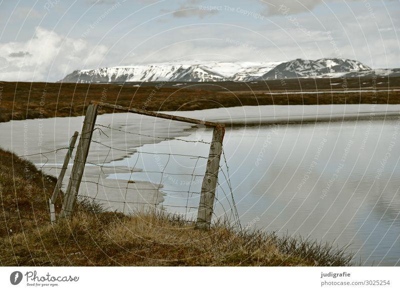 Island Umwelt Natur Landschaft Urelemente Wasser Klima Eis Frost Schnee Berge u. Gebirge Schneebedeckte Gipfel Seeufer Zaun kalt natürlich wild Stimmung Fernweh