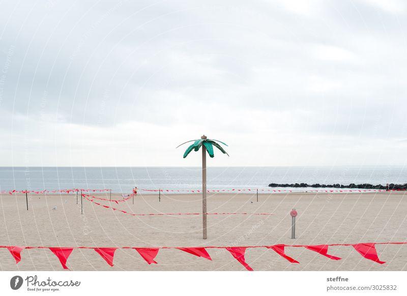 Palmenstrand Sand schlechtes Wetter trist New York City Coney Island Party Ferien & Urlaub & Reisen Traurigkeit leer nichts los fähnchen Wolken Ironie