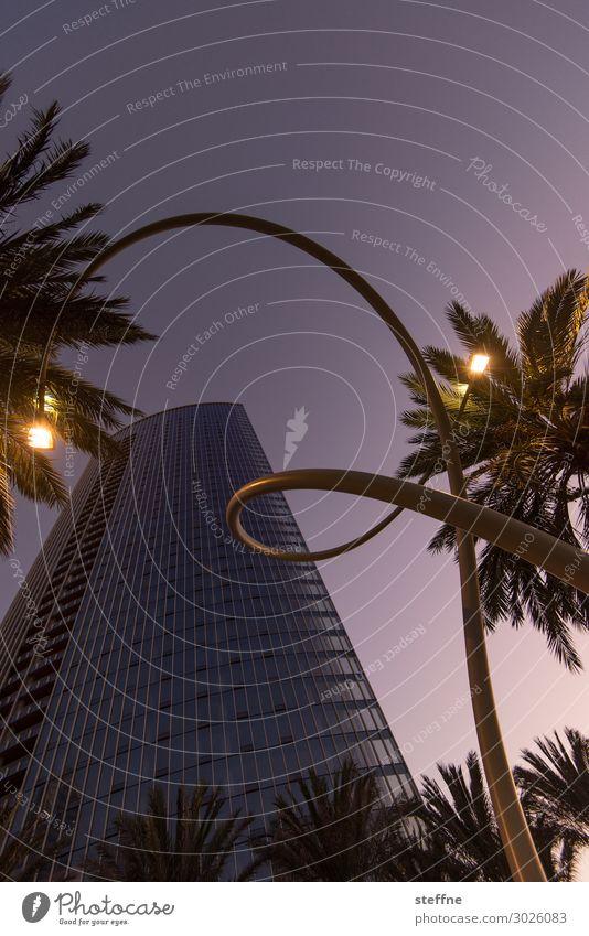 . Stadt Kunst Straßenbeleuchtung Laterne Windung Palme San Diego Hochhaus lila wolken Farbfoto Außenaufnahme Menschenleer Textfreiraum oben Dämmerung