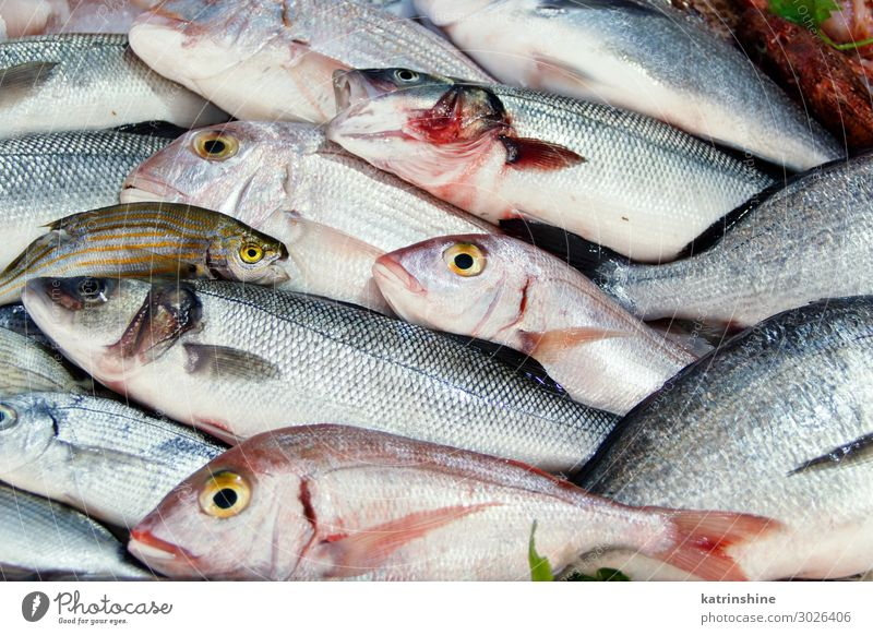 Mischfisch zum Verkauf auf dem Markt Meeresfrüchte Ernährung frisch Fisch Lebensmittel Italien Süden mediterran mischen gemischt Paca Provence Sale Fischer