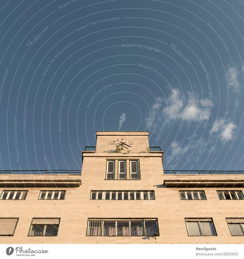 tempus fugit / Wildwuchs Himmel Wolkenloser Himmel Schönes Wetter Pflanze Baum Sträucher Budapest Stadtzentrum Haus Bauwerk Gebäude Architektur Fassade Fenster