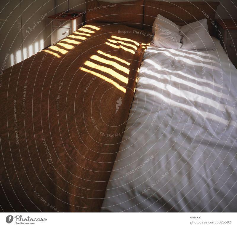 Tagtraum Häusliches Leben Innenarchitektur Fenster Schlafzimmer Bettwäsche Doppelbett Decke Bettdecke Kissen gemütlich außergewöhnlich kuschlig Wärme weich