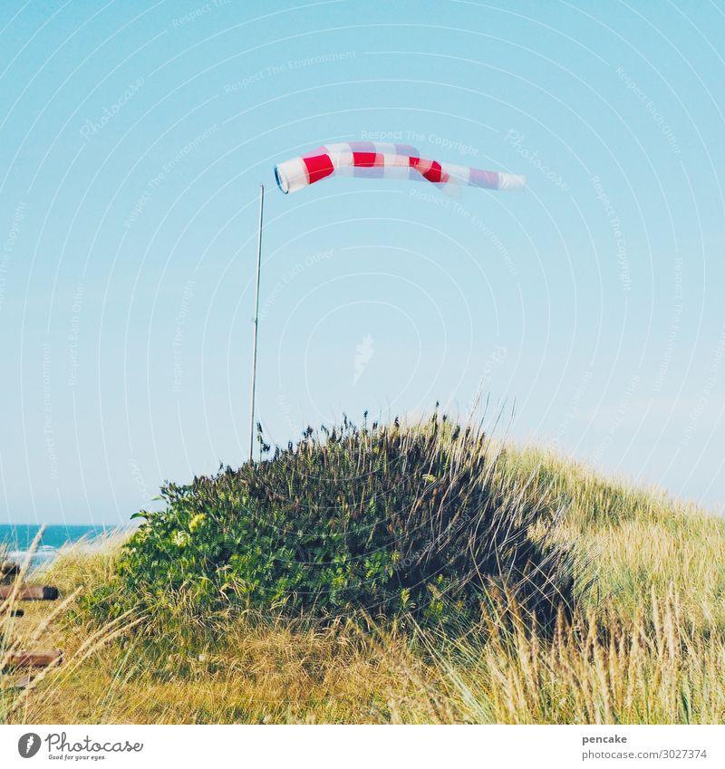 doppelt | luftig Himmel Ferien & Urlaub & Reisen Natur Sommer Landschaft Meer Küste Bewegung Sand Wind Schönes Wetter Tanzen Zeichen Urelemente