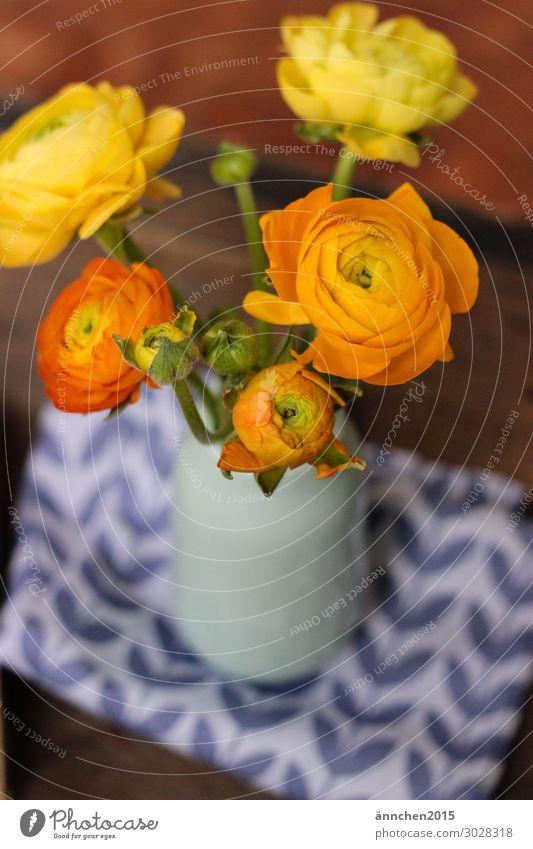 Hallo Frühling Blume gelb Blüte orange Ostern Blumenstrauß Stengel Vorfreude Vase Scharbockskraut