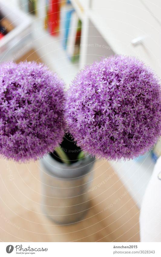 ()Sommer() Blüte Innenaufnahme Wohnung Vase Milchkanne Blume violett weiß grün silber