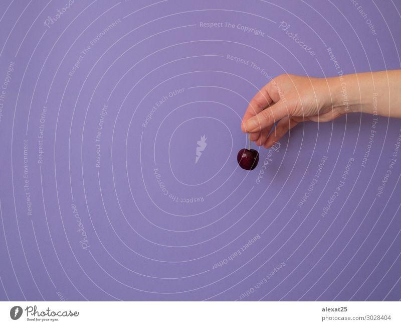 Hand mit Kirsche auf violettem Hintergrund mit Kopiermöglichkeit Frucht Dessert Vegetarische Ernährung Diät Frau Erwachsene Natur frisch hell lecker natürlich