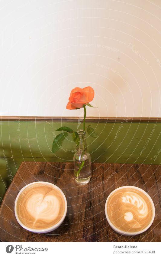 Guten Morgen-Kaffee Frühstück Getränk trinken Milch Schalen & Schüsseln Tasse Lifestyle Fitness Leben Innenarchitektur Dekoration & Verzierung Blume Rosenblüte