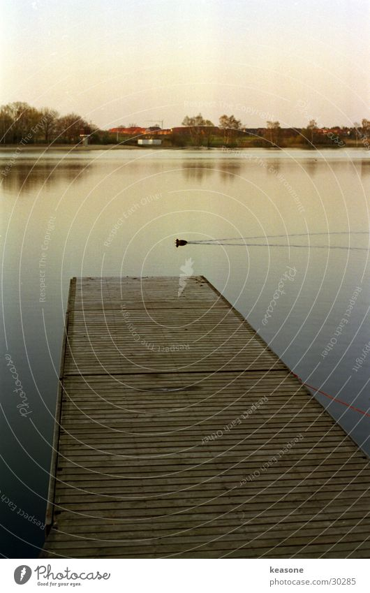 ente braun Holz Steg schön See Teich Ente Wasser Himmel Linse Stimmung http://www.keasone.de