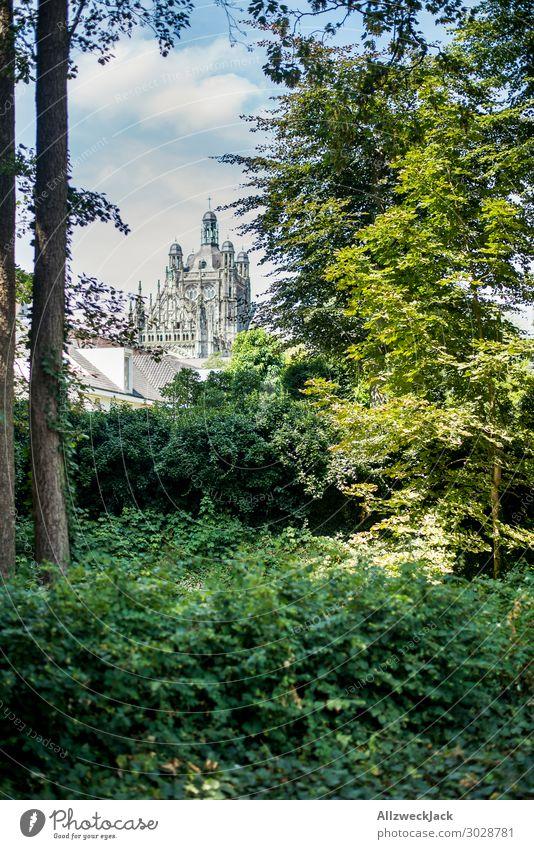 's-Hertogenbosch und die St. Johannes Kathedrale Niederlande 's-hertogenbosch den bosch Wald Baum grün Natur st. johannes kathedrale Religion & Glaube Kirche