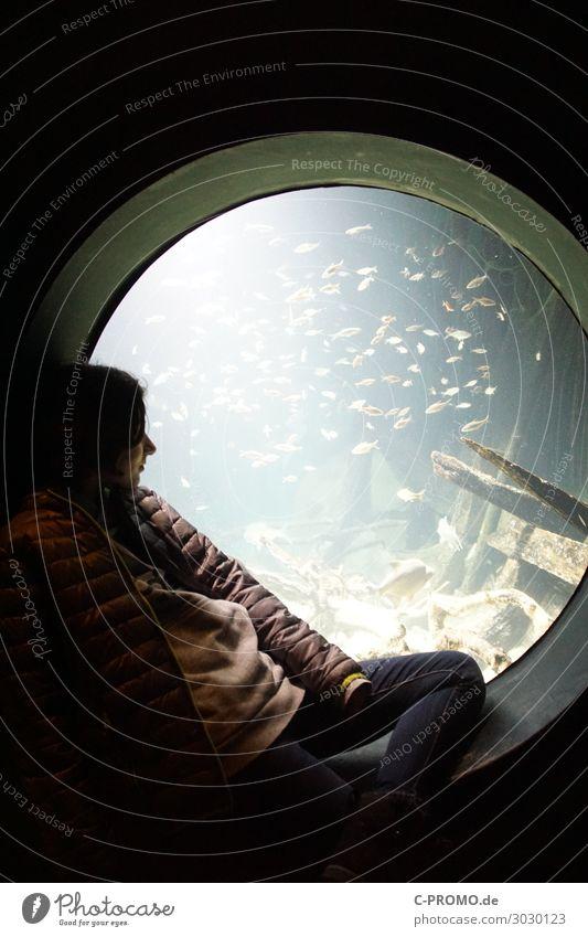 Nautilus Mensch Mädchen 1 8-13 Jahre Kind Kindheit Wasser Jacke Wildtier Fisch Aquarium Schwarm genießen sitzen ruhig Unterwasseraquarium Bullauge Fenster
