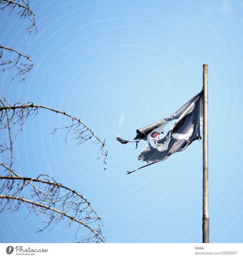 luftig | bis zum Anschlag (Lappen am Haken I) Himmel Schönes Wetter Baum Fahne Fahnenmast Schädel dunkel kaputt rebellisch trashig wild Leidenschaft Leben