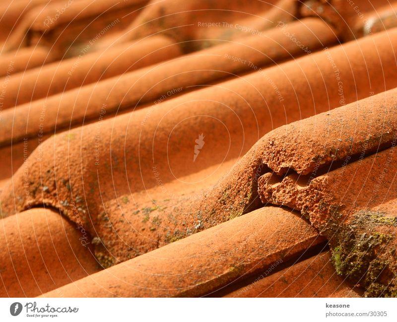 fensterblick rot Architektur Perspektive Dach Backstein