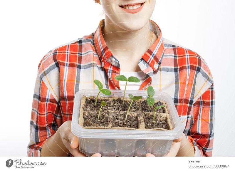 Agronomin, die in den Händen von jungen Setzlingen hält. Lifestyle kaufen Freizeit & Hobby Sommer Veranstaltung Kindererziehung Bildung Studium lernen Student