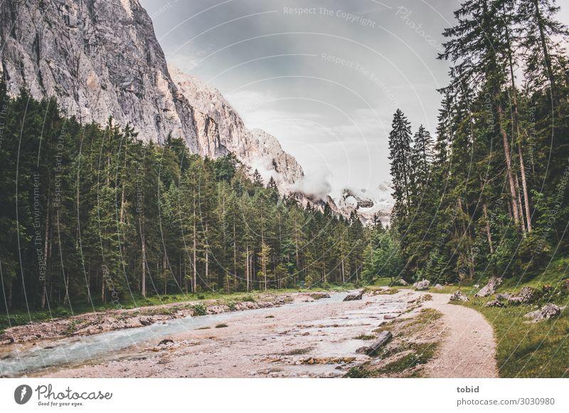 Bergtal Natur Landschaft Pflanze Wasser Himmel Wolken Horizont Sommer Schönes Wetter Baum Gras Sträucher Moos Wald Felsen Alpen Berge u. Gebirge Gipfel
