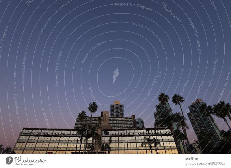 Reflex Wolkenloser Himmel Schönes Wetter Skyline Hochhaus Fassade trendy San Diego Kalifornien Reflexion & Spiegelung Palme königspalme Glasfassade Reichtum