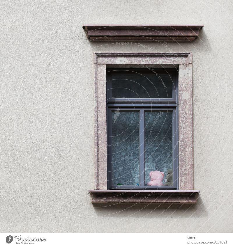 Freunde fürs Leben | AST 10 Mauer Wand Fenster Spielzeug Teddybär Stofftiere Dekoration & Verzierung Sammlerstück sitzen trashig Stadt Geborgenheit Sympathie