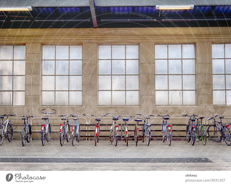 Räder in Reihe Fahrrad Fahrräder Fahrradständer abgestellt nebeneinander Mobilität parken Fahrradfahren Stellplatz Regenschutz Sicherheit alternativ Fenster