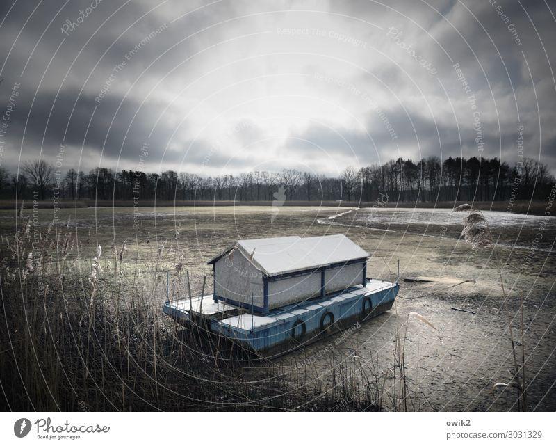 Trockenschwimmer Umwelt Natur Landschaft Wolken Horizont Sonne Herbst Klimawandel schlechtes Wetter Baum Sträucher Seeufer Hausboot Fischereiwirtschaft Kahn