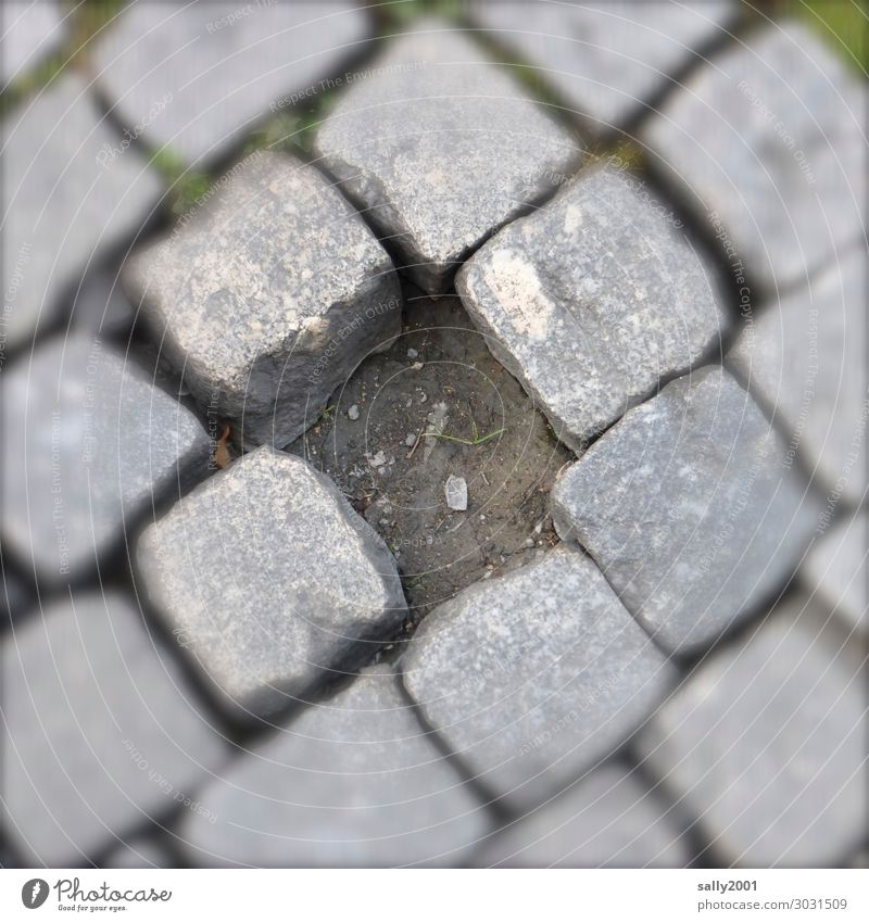 Mut zur Lücke... Straße Wege & Pfade alt eckig Originalität grau Vergänglichkeit verlieren Zerstörung Kopfsteinpflaster Pflastersteine fehlen Mittelpunkt