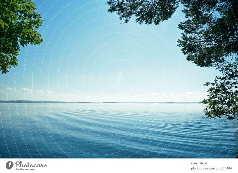Finnischer See im Blätter Rahmen Glück Gesundheit Gesundheitswesen Alternativmedizin Wellness harmonisch Wohlgefühl Erholung ruhig Ferien & Urlaub & Reisen