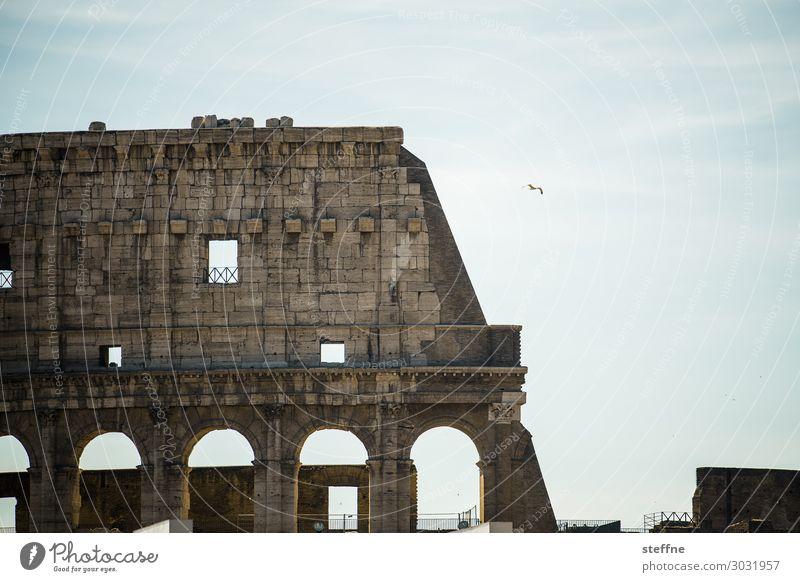 Around the World: Rom Mauer Wand Fassade Sehenswürdigkeit Wahrzeichen Denkmal Kolosseum außergewöhnlich Italien Tourismus Farbfoto Gedeckte Farben Außenaufnahme