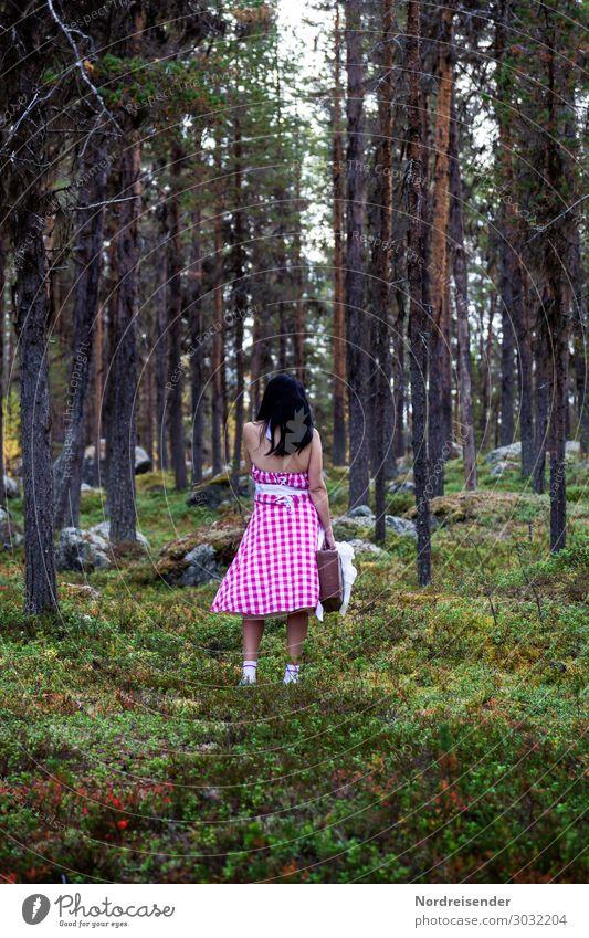 Verlaufen im Wald Ferien & Urlaub & Reisen Ausflug wandern Mensch feminin Junge Frau Jugendliche Erwachsene Natur Landschaft Urelemente Baum Gras Moos