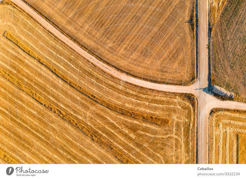 Getreidefelder in Castilla y Leon Spanien bird´s aus der Sicht von bird´s Brot Sommer Sonne Natur Landschaft Pflanze Himmel Wolken Horizont Wiese Fluggerät