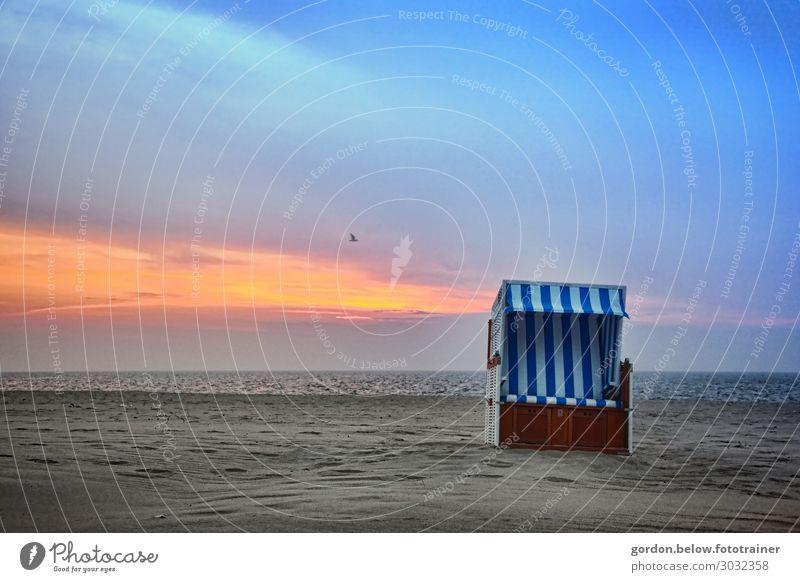 Strandträume Lifestyle Freude Wellness Erholung ruhig Ferien & Urlaub & Reisen Ausflug Sommerurlaub Meer Strandkorb Natur Landschaft Wasser Himmel Wolken Ostsee