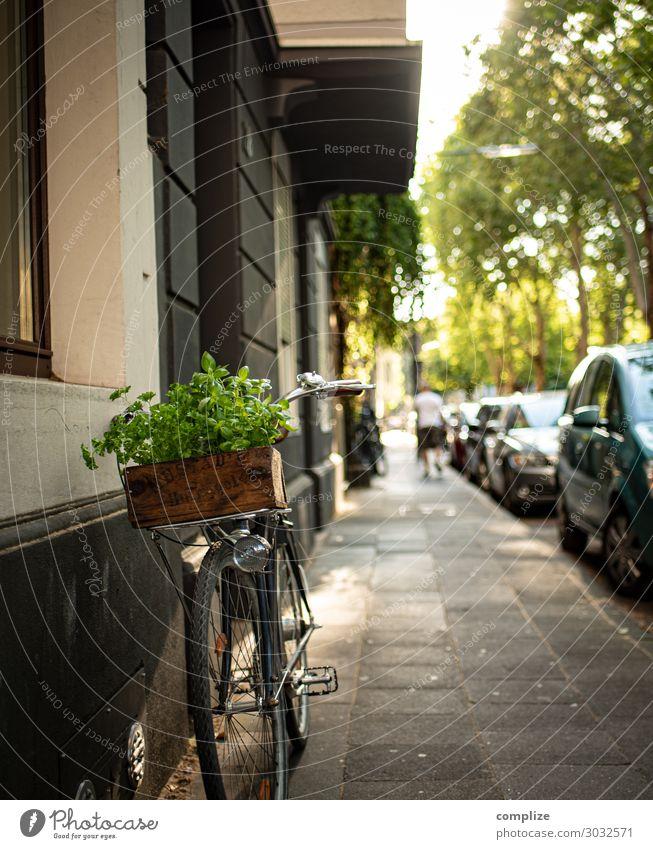 Fahrrad mit Vintage Kräuter-Holzkiste Gesunde Ernährung Stadt Lebensmittel Straße Lifestyle Wand Mauer Fassade Häusliches Leben Freizeit & Hobby Horizont