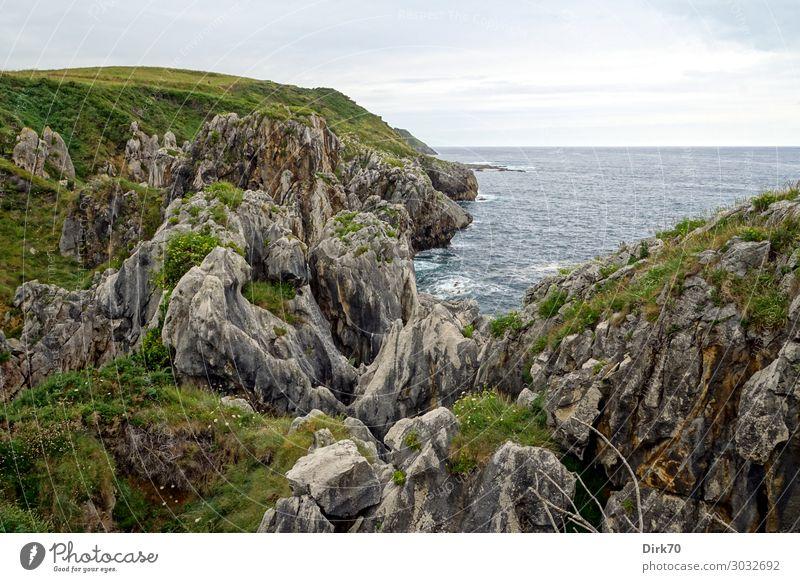 Kantabrische Küste bei bedecktem Himmel Ferien & Urlaub & Reisen Tourismus Sommerurlaub Meer Wellen Landschaft Wolken schlechtes Wetter Blume Gras Sträucher