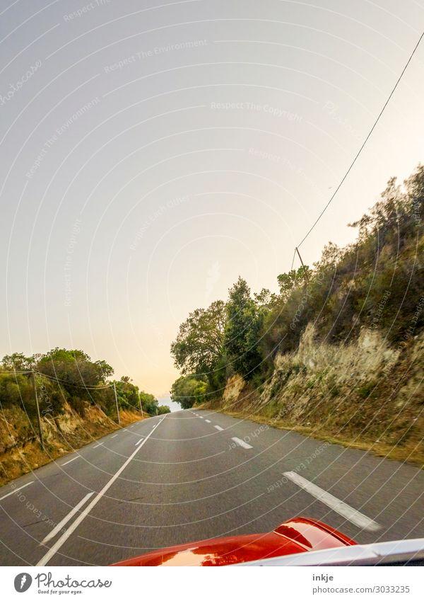 Cabriofahrt | luftig Lifestyle Reichtum Ausflug Sommer Umwelt Landschaft Schönes Wetter Baum Sträucher Korsika Landstraße Verkehr Verkehrswege Autofahren Straße