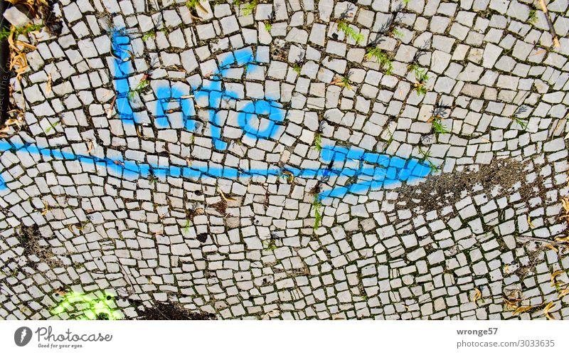 Info > Stadt Pflastersteine Pflasterweg Verkehrswege Wege & Pfade Stein Schriftzeichen Schilder & Markierungen Graffiti schreiben blau grau Farbe steinig