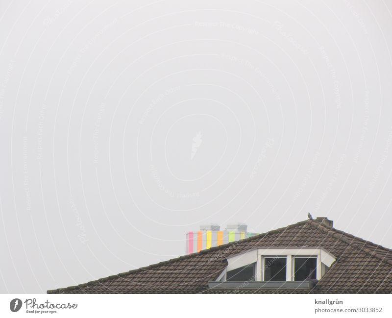 Wohnung mit Aussicht Haus Dach Dachloggia Tier Taube 1 hoch Stadt mehrfarbig grau schwarz Horizont Häusliches Leben Penthouse Hochhaus Farbfoto Außenaufnahme