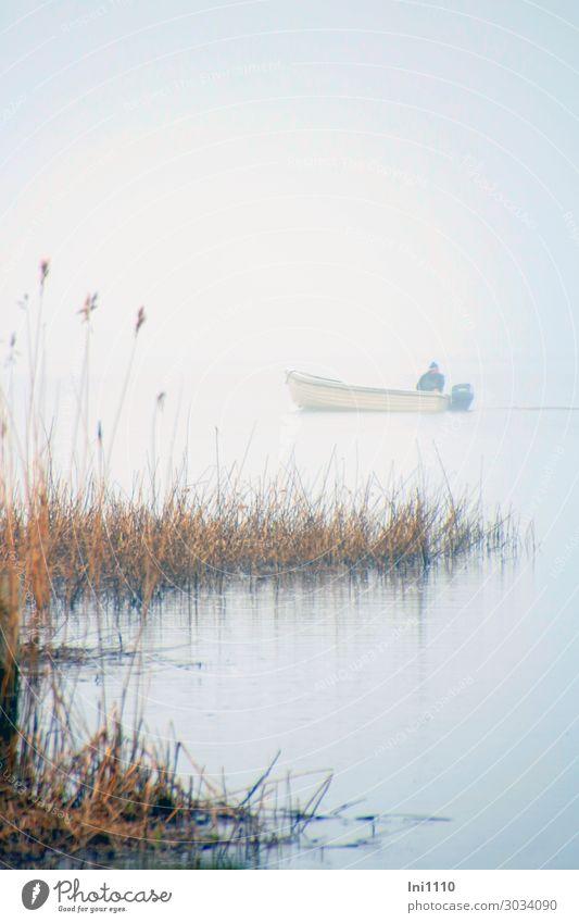 Fischer kehrt heim Seeufer blau gelb grau schwarz weiß Wasserfahrzeug Angeln Schilfrohr Usedom Morgen Nebelschleier Dunst Motorboot wiederkommen