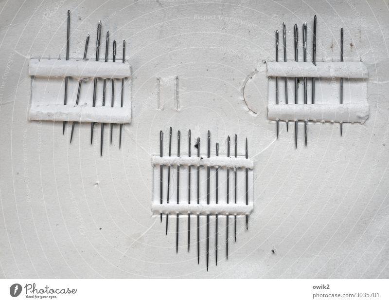 Nadelwald Sammlung Stricknadel Karton Metall dünn fest Zusammensein retro Spitze viele Identität kompetent Ordnung Nadelöhr Schwarzweißfoto Innenaufnahme