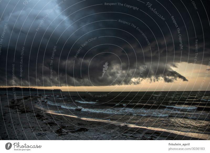 Sturmtief Nord-Nordost Sommer Strand Meer Wellen Natur Landschaft Sand Wasser Wolken Wetter schlechtes Wetter Unwetter Gewitter Küste Ostsee bedrohlich dunkel
