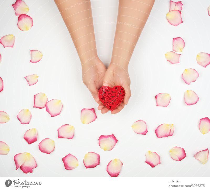weibliche Hände halten rotes Herz, weißer Hintergrund schön Haut Leben Spa Dekoration & Verzierung Feste & Feiern Valentinstag Mensch Frau Erwachsene Hand