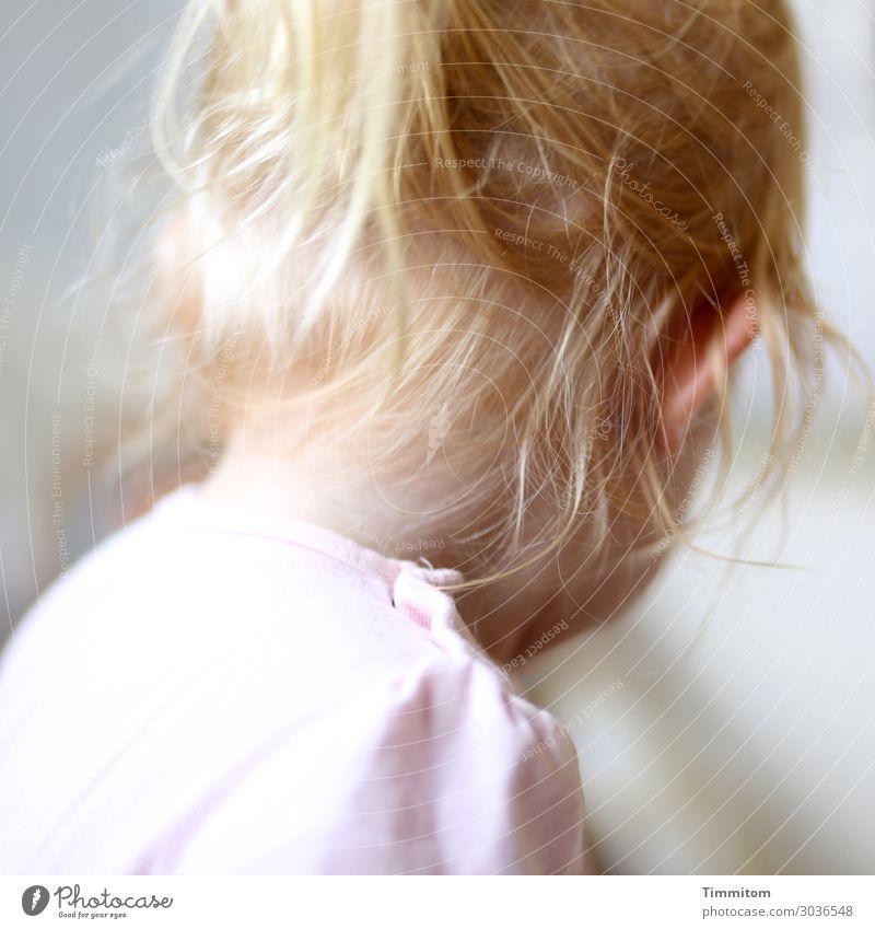 Goldmarie feminin Kleinkind Mädchen Kindheit Kopf Haare & Frisuren 1 Mensch 1-3 Jahre blond ästhetisch gelb gold rosa Gefühle Zuneigung Farbfoto Innenaufnahme