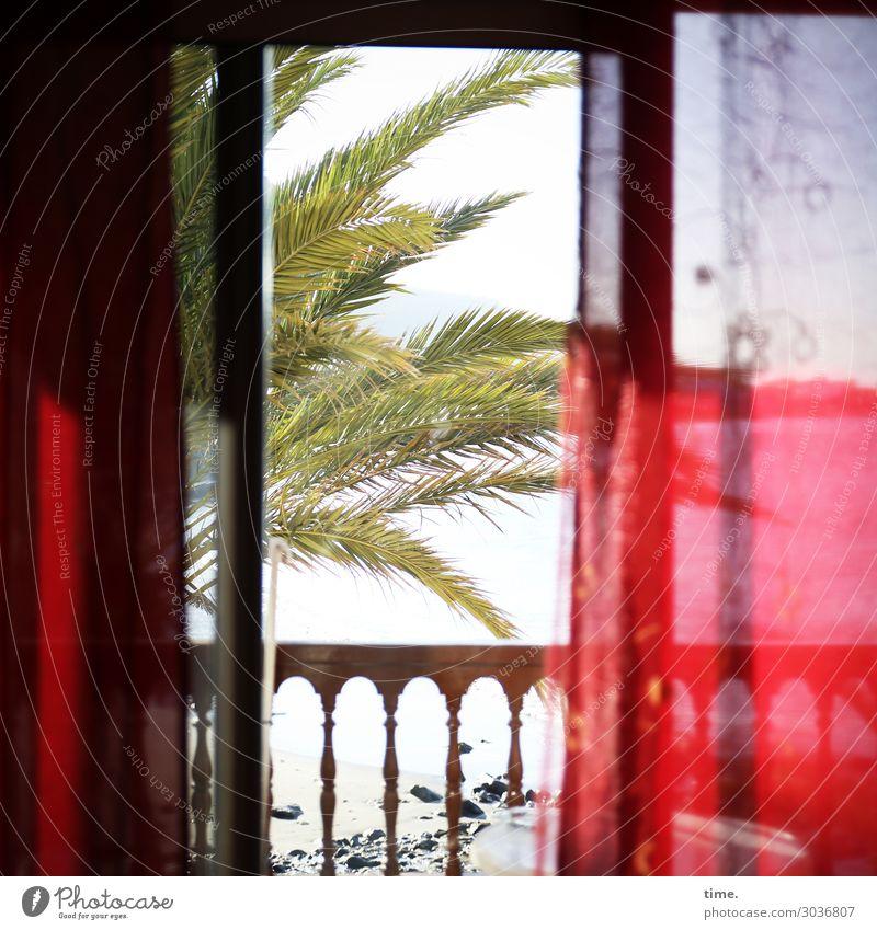 Sommer vorm Balkon Ferien & Urlaub & Reisen Tourismus Häusliches Leben Wohnung Raum Balkontür Geländer Vorhang Pflanze Palme Strand Stimmung Geborgenheit