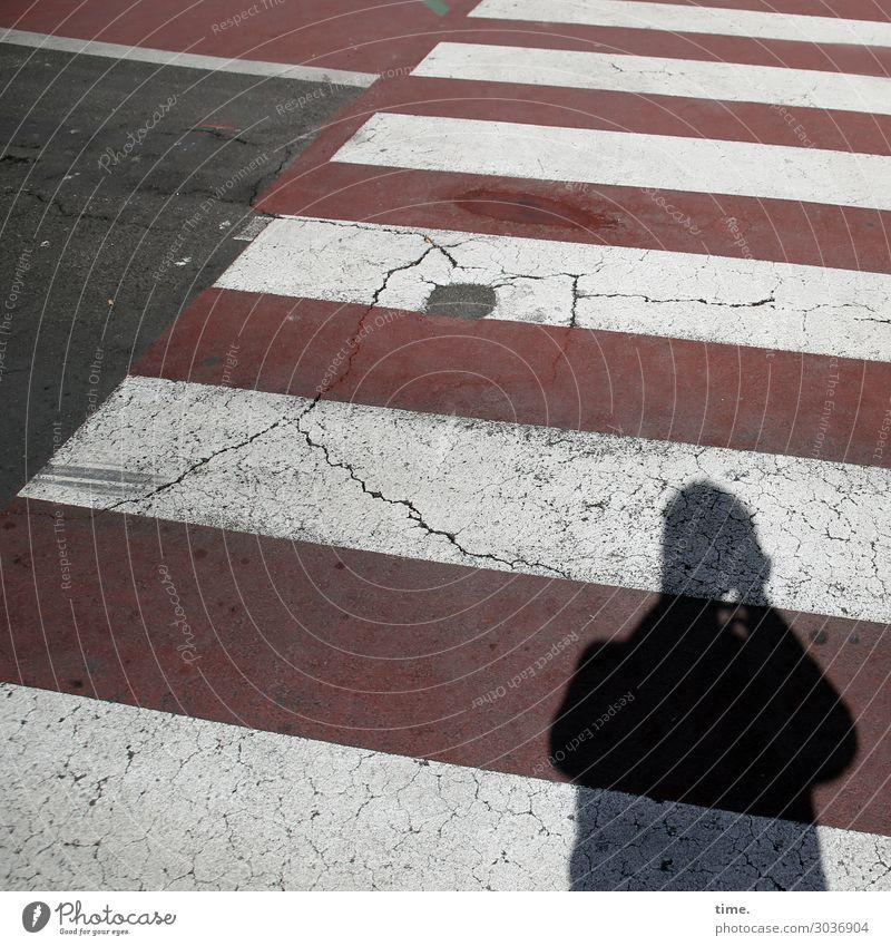 Zebras fotografieren | on the road again Mensch Mann Stadt weiß rot dunkel schwarz Straße Erwachsene Wege & Pfade Stimmung maskulin Verkehr stehen Perspektive