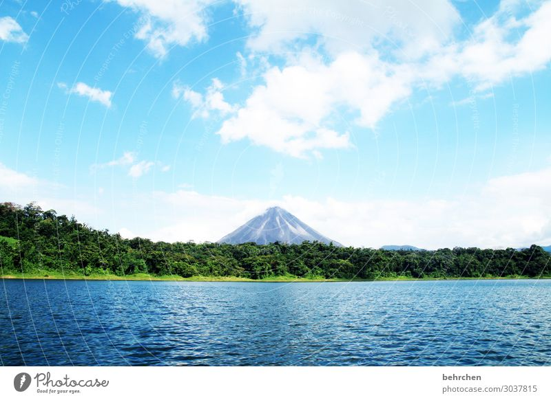 lieblingsvulkan Ferien & Urlaub & Reisen Tourismus Ausflug Abenteuer Ferne Freiheit Umwelt Natur Landschaft Wasser Himmel Wolken Urwald Vulkan arenal See
